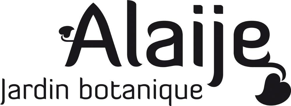 logo_464_logo_alaije.jpg