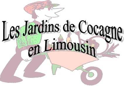 logo_709_logo_jdc.jpg
