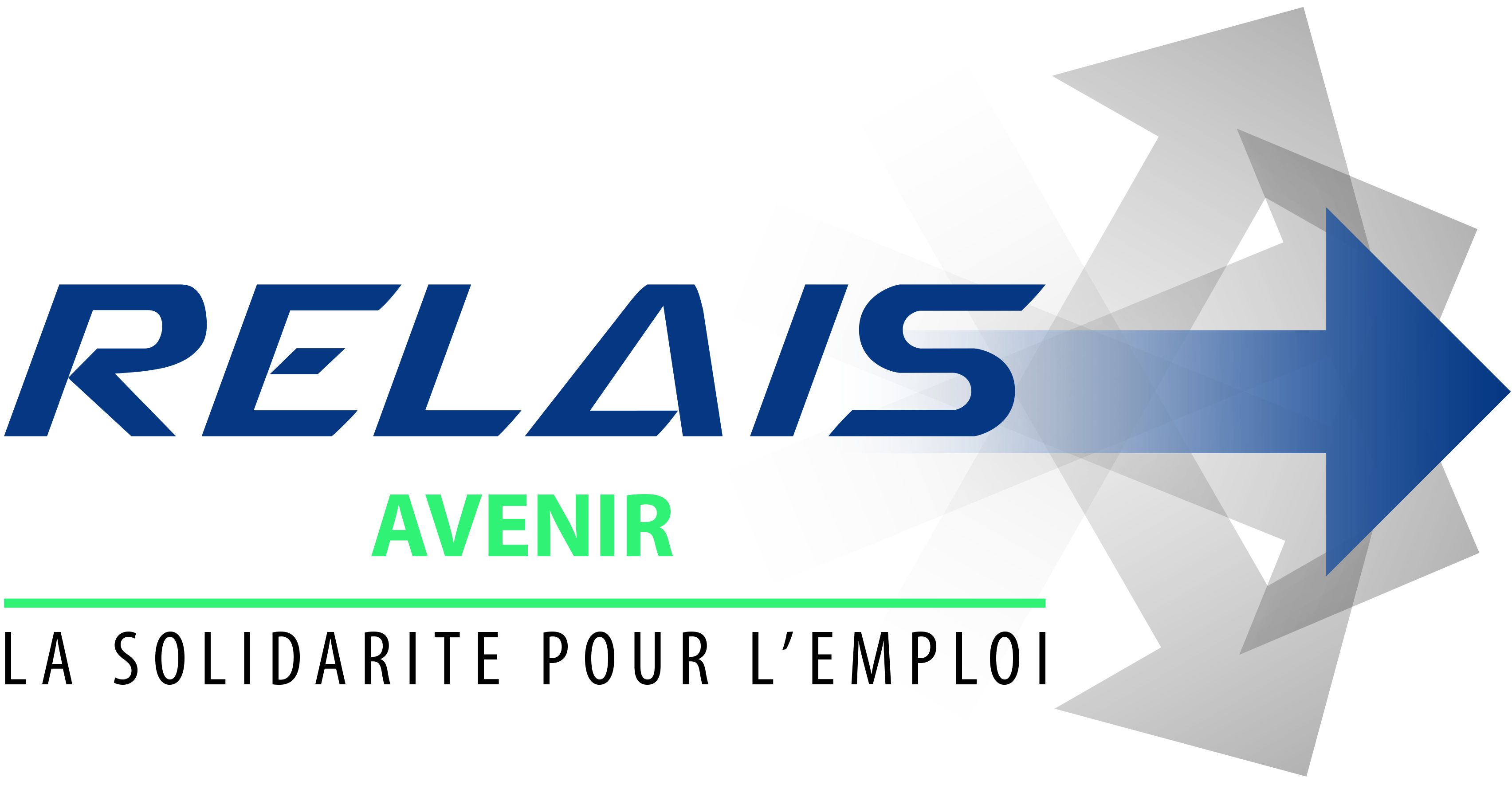 logo_781_relais_avenir.jpg